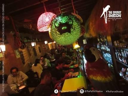 The Parrot Shadow Bar Miraflores 09