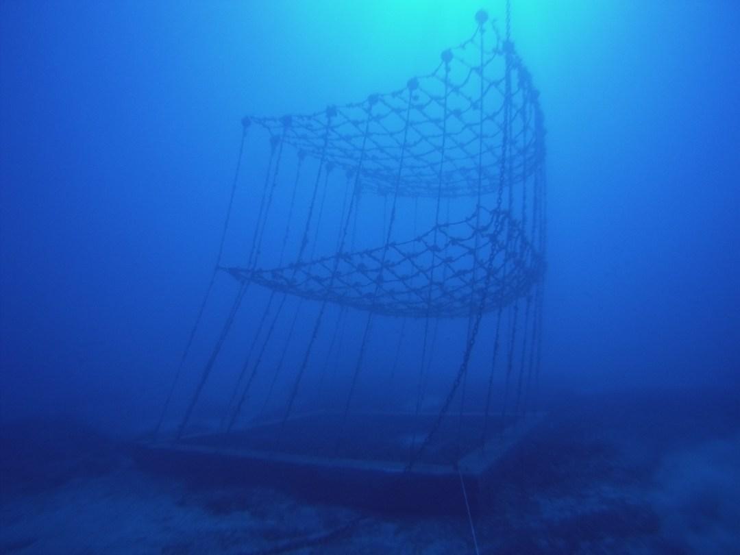 Fishing net on Artificial reef
