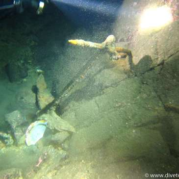 Nattdykk (Ledige plasser dyp dykkerkurset), Nattdykker, (Discover Local Diving)