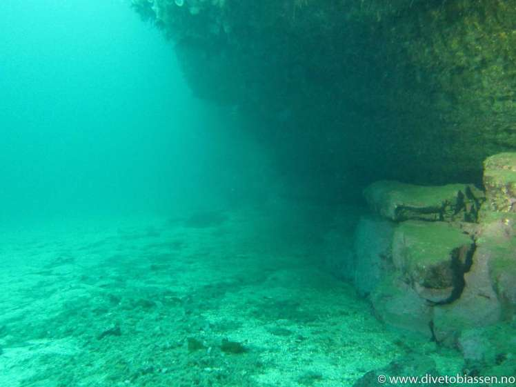 Overheng, god sikt, (Discover Local Diving)