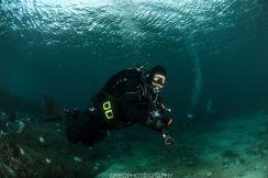 Dykkere, god sikt, om meg