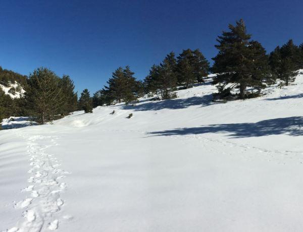 Ruta de la Sierra de Guadarrama nevada