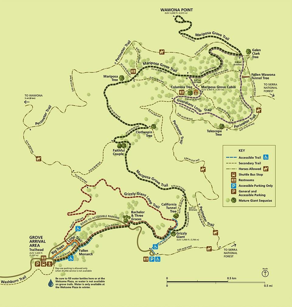 Mapa del Mariposa Grove Trail