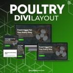Divi Poultry Layout 2