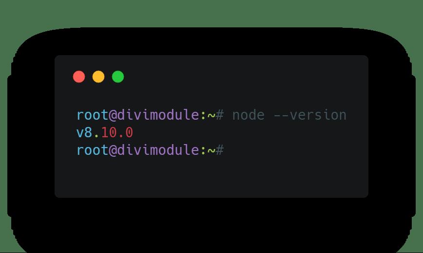 node version check