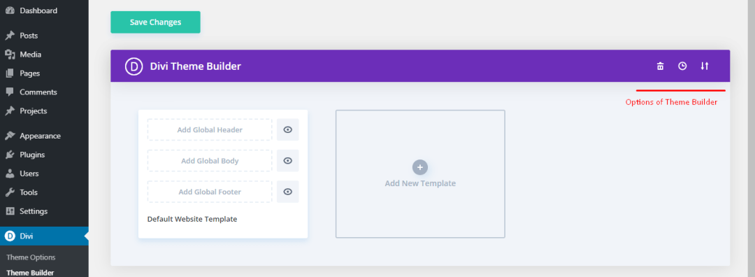 Options in Divi Theme Builder