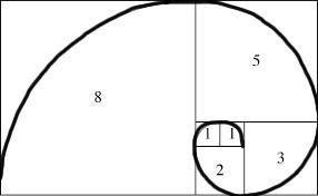 Fibonacci spiral esempio della crescita spirituale sul DivineLightVibrations.com con Glenn Younger