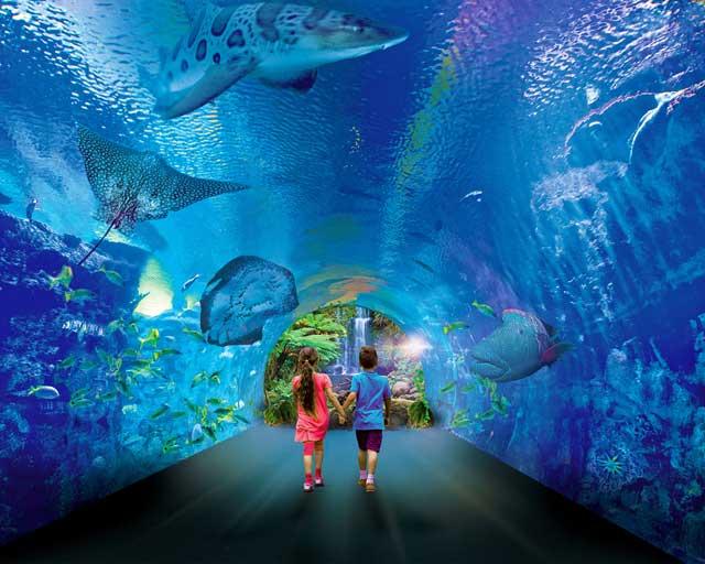 Hurghada Grand Aquarium Best Things to Do in Hurghada