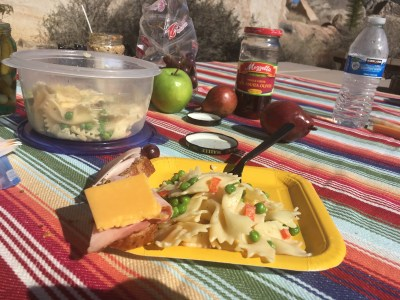 Cold pasta salad, cold cuts and fruit!