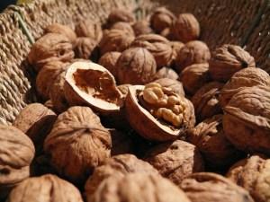 walnuts-498095_1280