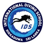 The International Diving School