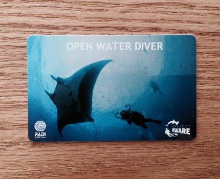 ダイビングのライセンス取得!講習ではどんなことをやるの?