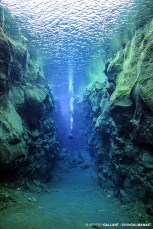 Diving through the Cathedral, at Silfra. Photo © Jeffrey Gallant | Diving Almanac