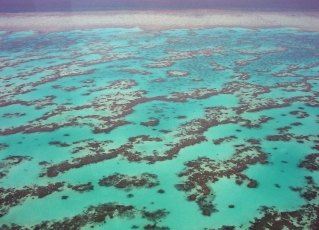 Great Barrier Reef. Photo by Nickj (Creative Commons)