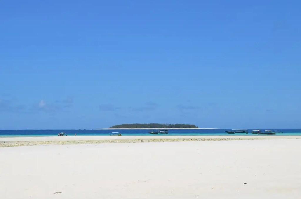 Zanzibar-Mnemba-03