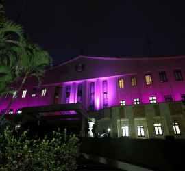Palácio dos Bandeirantes ilumina fachada em comemoração ao Outubro Rosa
