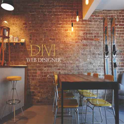 ecommerce websites Divi theme