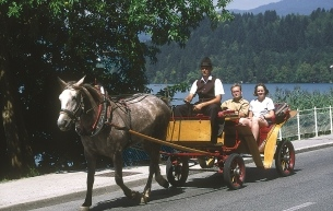 croppedimage305193-Carriage-ride3
