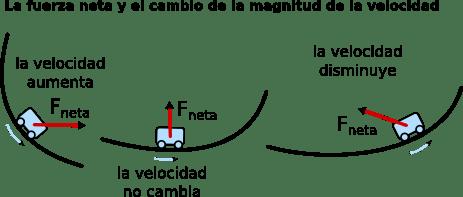 Fuerza neta y cambio de la magnitud de la velocidad