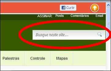 wordpress seo yoast plugin pesquisa páginas