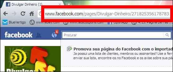 fan page fas pagina fa facebook url