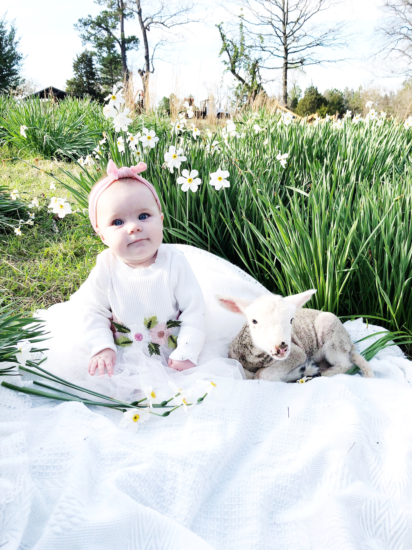 Oakley had a Little Lamb
