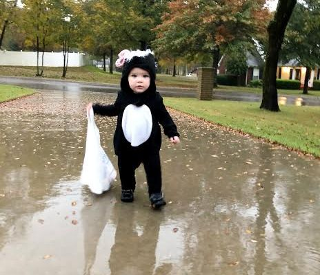 The Little Stinker's Halloween
