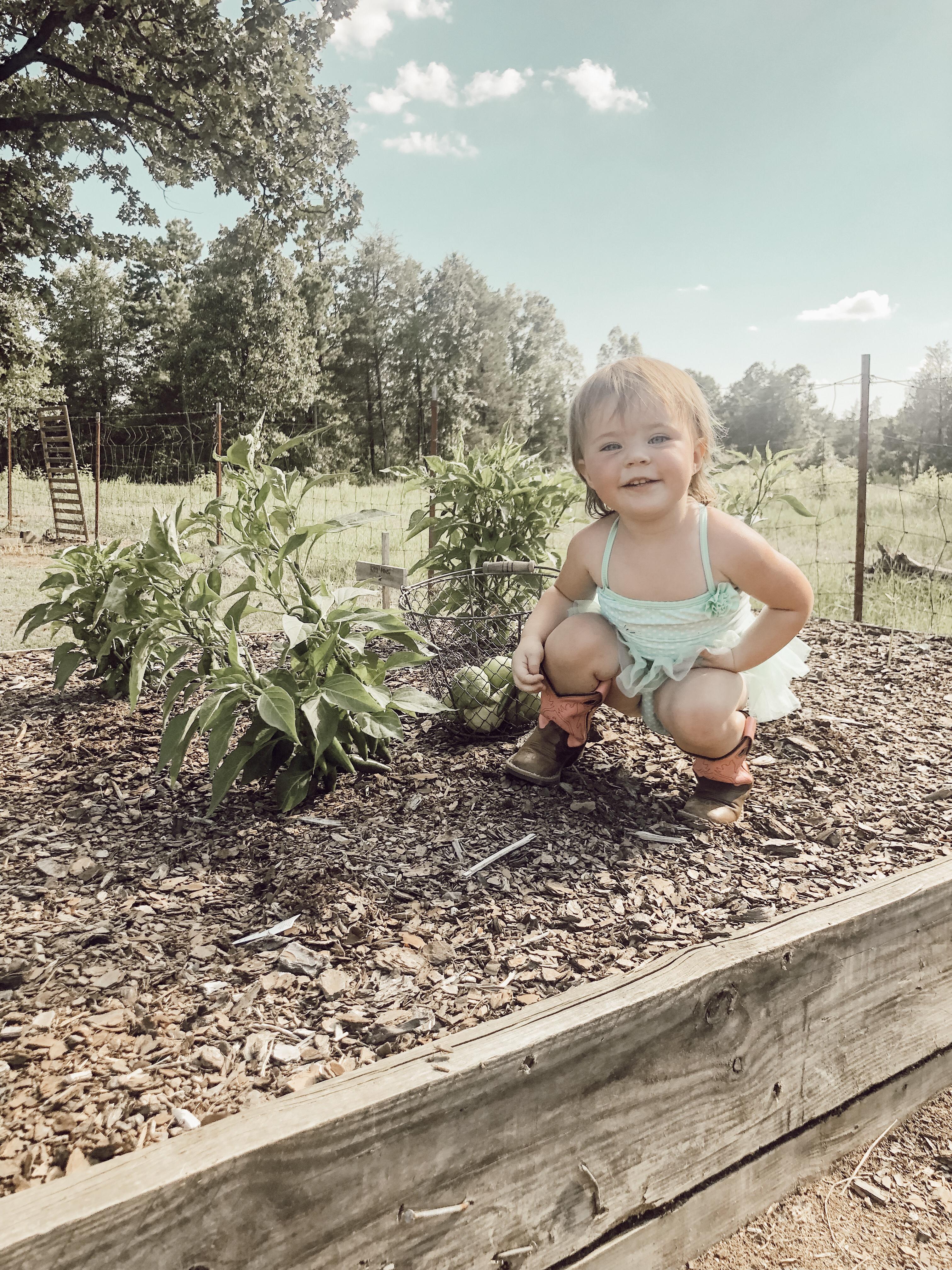 5 Tips for Beginning Gardeners