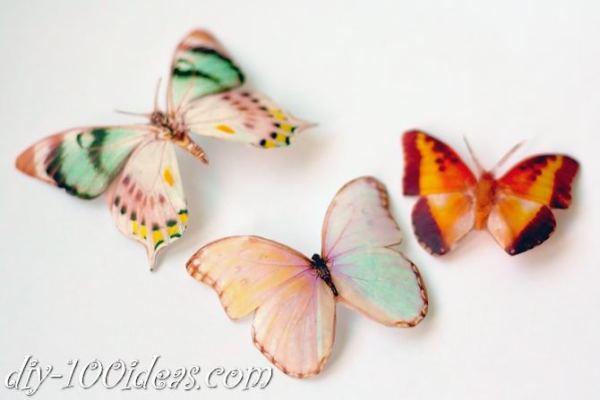 DIY Butterfly From Plastic Bottles (8)