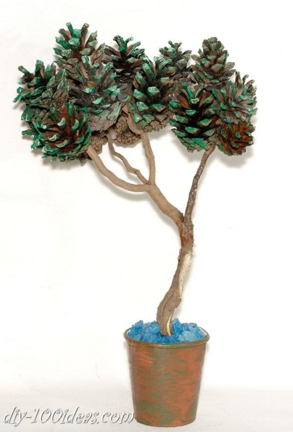 bonsai tree with pine cones (3)