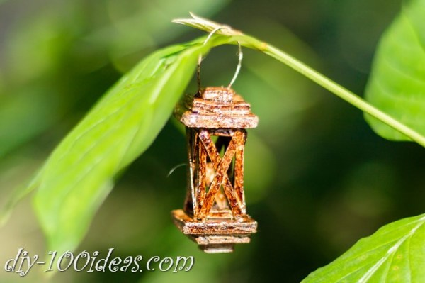 diy mini lantern (12)