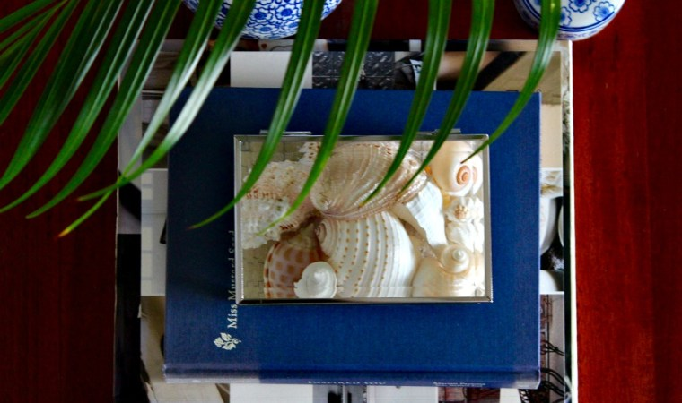 Glass box styled with shells