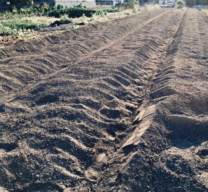 畝だてが終わった畑