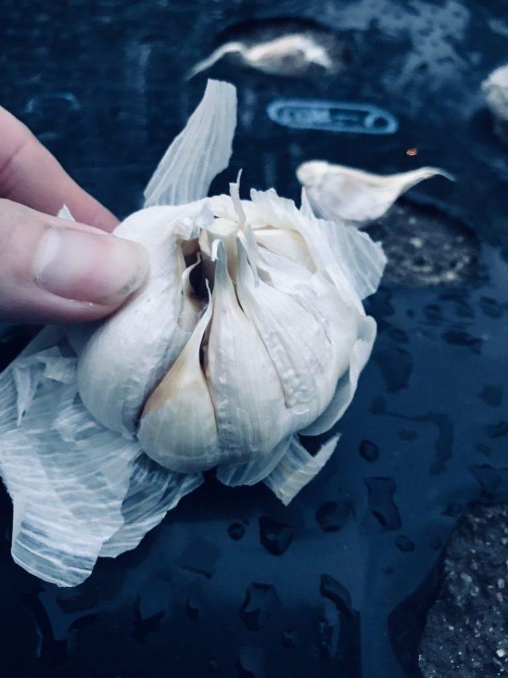 ニンニクをばらして種を作る