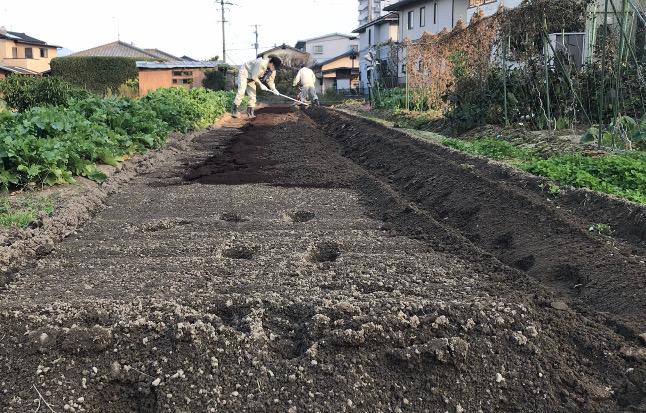 寄せた土をクワでならす
