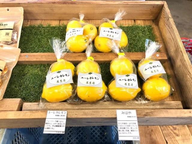 ボーダレスラウンジで売っている長与のレモン