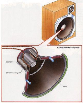 Inside a loudspeaker