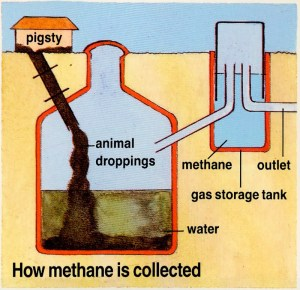 HOW IS BIOGAS MADE?