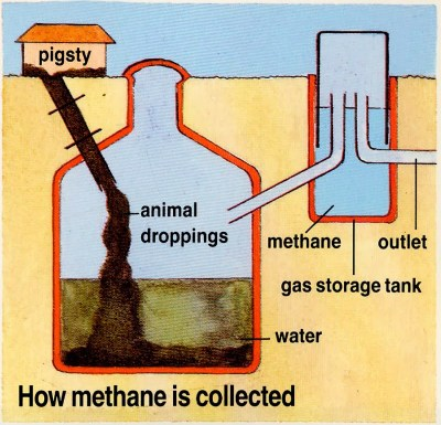 How is biogas converted into an energy source