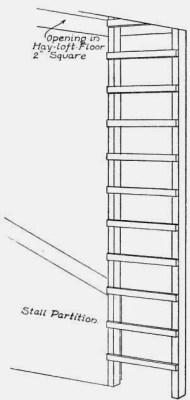 Ladder to Hay-loft