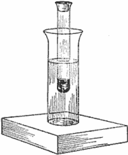 How to Make a Hydrometer