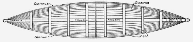 How to Build a Canoe - Fig. 205.—Top View of Canoe, showing Gunwales, Ribs, and Ribbands in place.