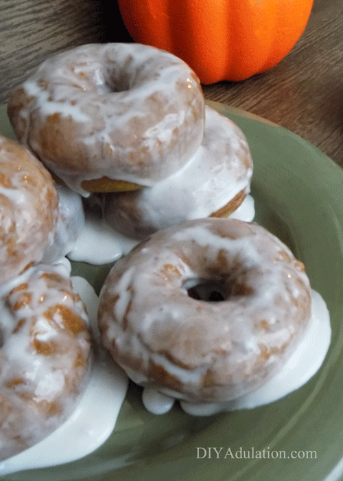 Quick breakfasts don't have to be limited to cereal and Pot Tarts. These easy homemade pumpkin spice donuts are a delicious grab and go breakfast!