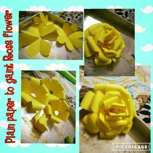 Paper Flower craft.