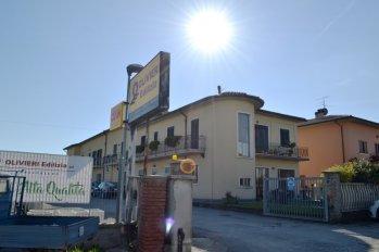 BigMat Olivieri Edilizia Sansepolcro (AR)