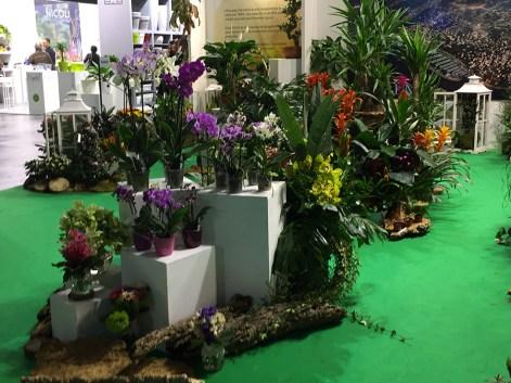 Myplant&Garden 2018