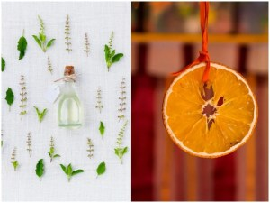 6 Healthy Cleaning Alternatives – Super Cheap & Easy