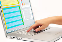 spreadsheet on a laptop