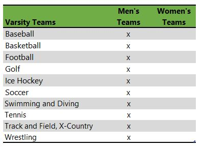 Saint John's university athletic teams