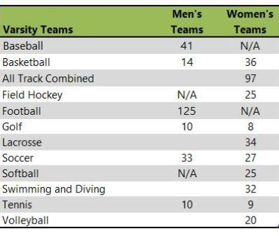 James Madison athletic teams